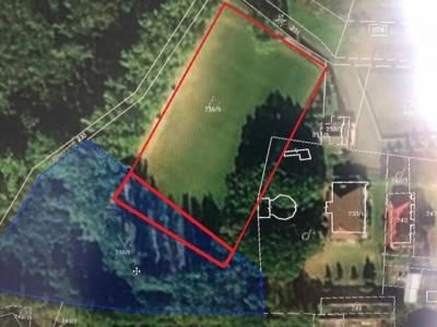 GARANT REAL -  predaj - pozemok 8000 m2, Zemplínska Nová Ves, okr. Trebišov