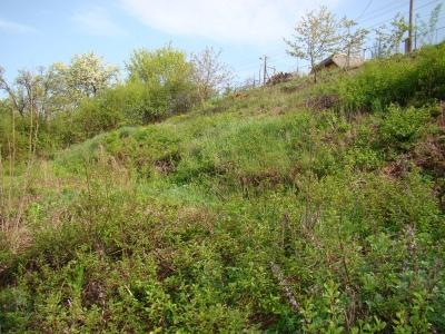 GARANT REAL - Predaj pozemok, OV, výmera 1186 m2, Sabinov