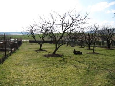 GARANT REAL - predaj stavebný pozemok, 949 m2, všetky IS, Svinia, okr. Prešov