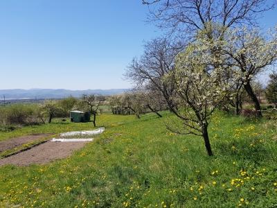 GARANT REAL - predaj pozemok , výmera  3263 m2, Abranovce